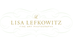 Lisa Lefkowitz Photography